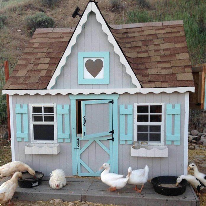 chicken coop cottage kit