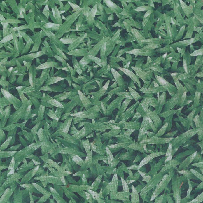 Prickly Mats fake grass