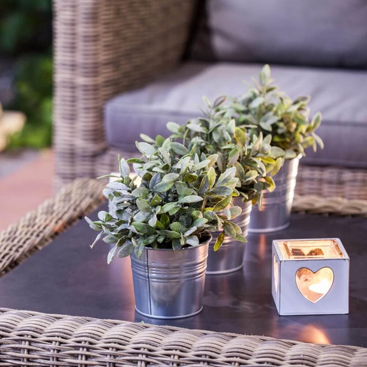 patio furniture accessories plants