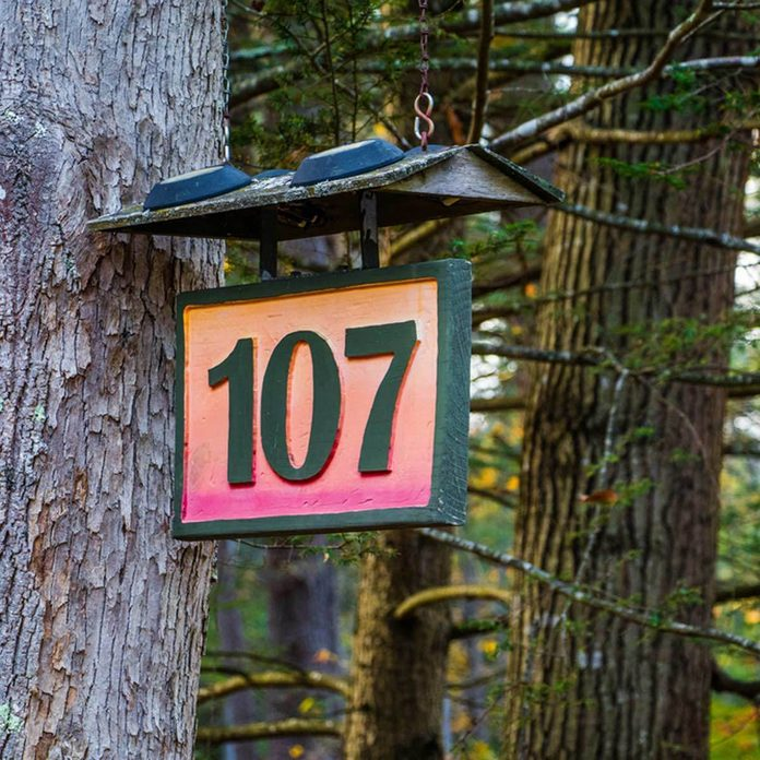 house numbers hung from a tree