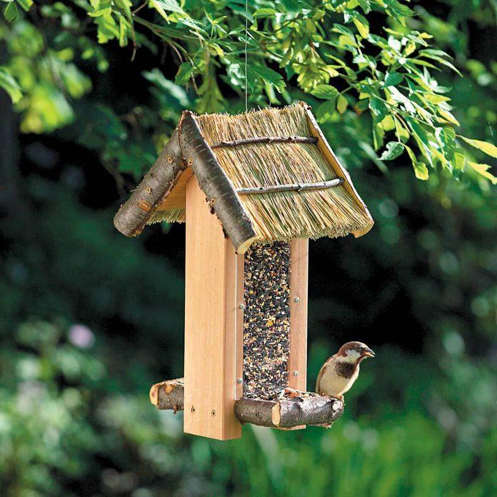 cozy cabin bird feeder