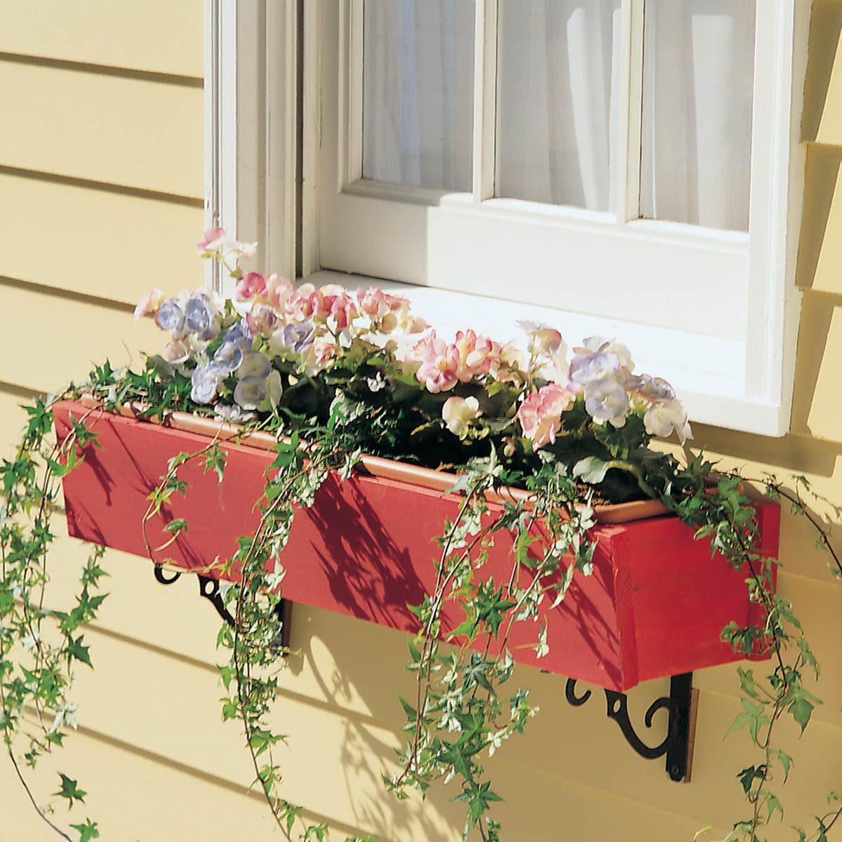 rot-proof window box flowers