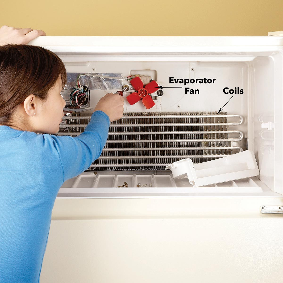 remove evaporator fan fridge freezer fan