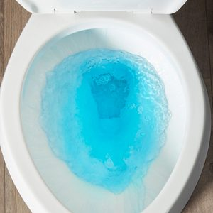 toilet tune-up flush clean