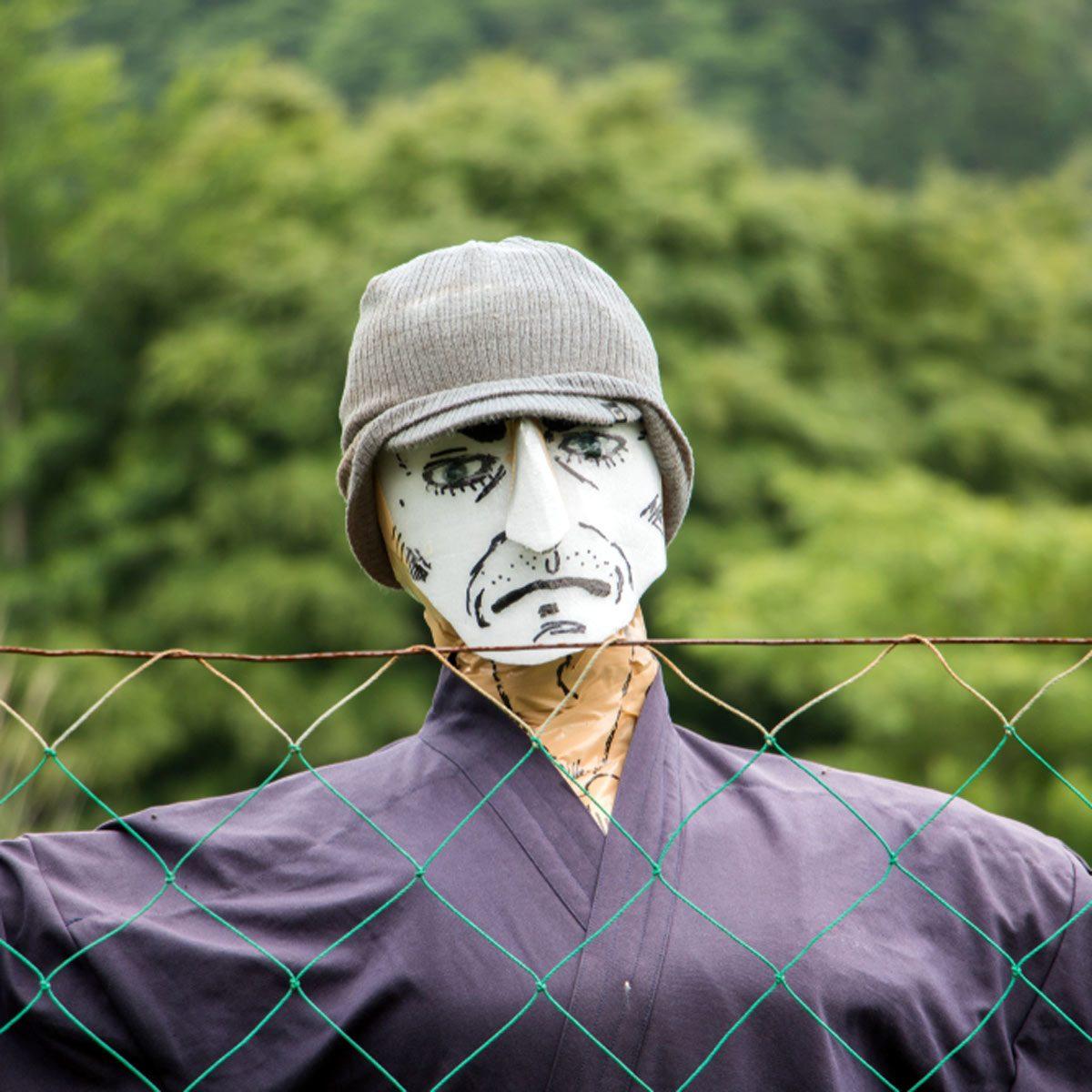 masked scarecrow