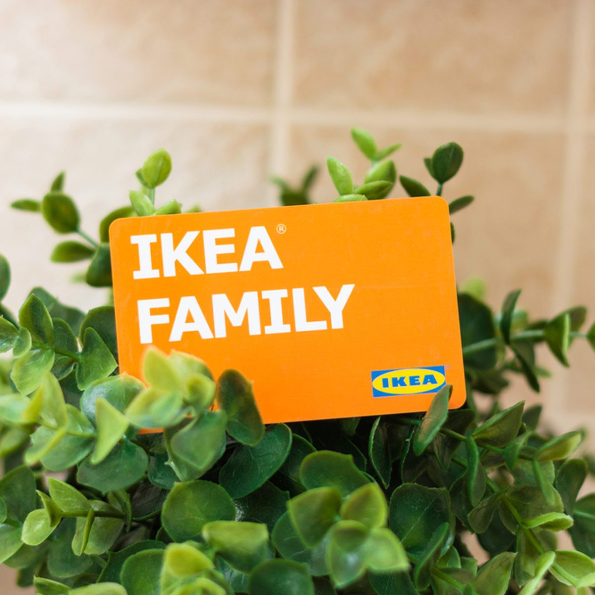 Ikea family membership card