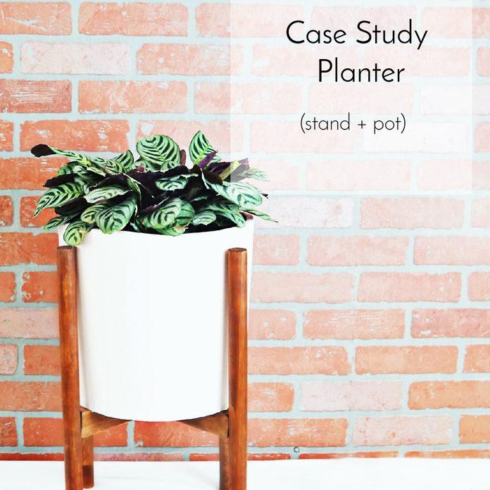 Case-Study Planter