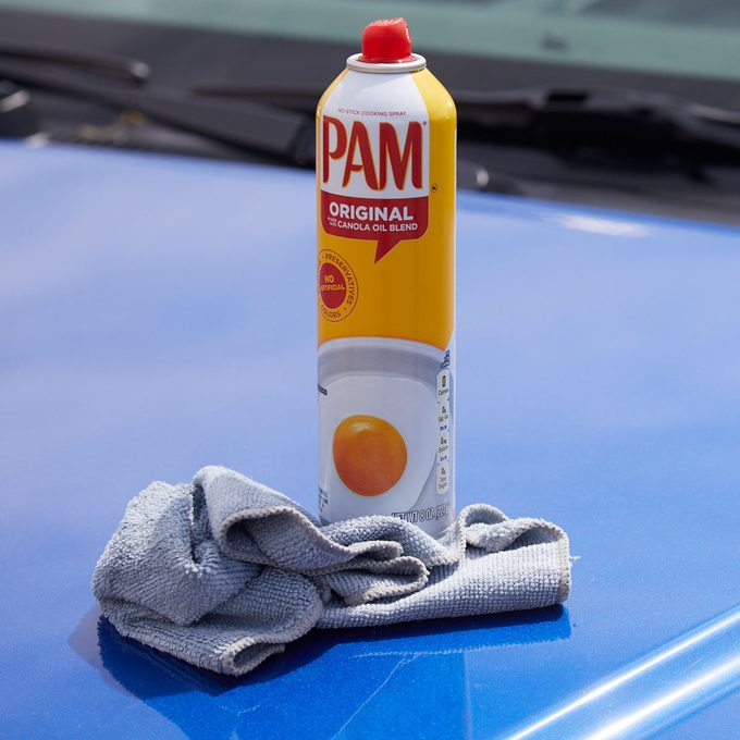 HH pam car cleaning bug splatters