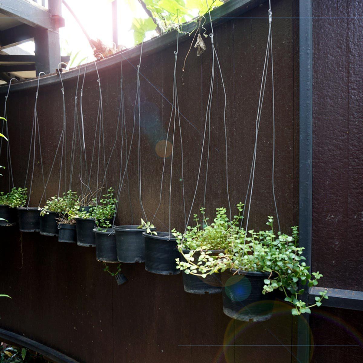 plants deck rail plant hangers