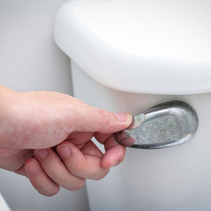 toilet flush handle