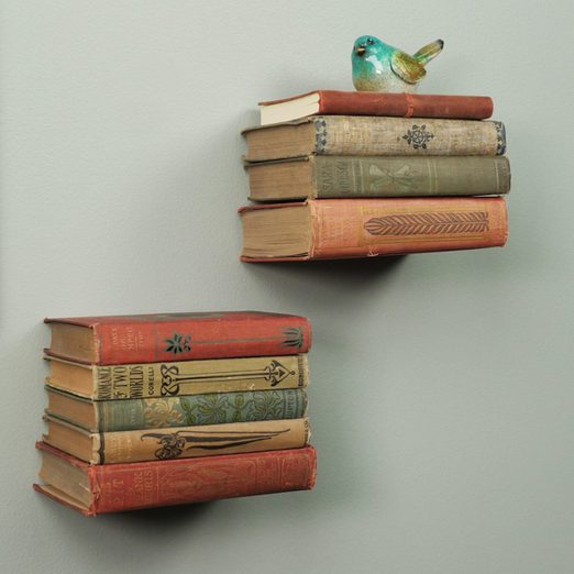 Invisible Bookshelf Lead