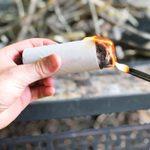 DIY Lint Fire Starter Log