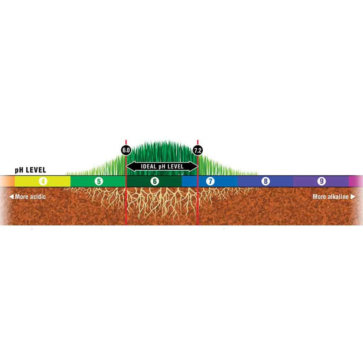 soil pH level