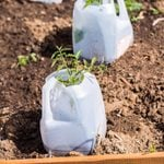 11 Landscaping Hacks That Will Save You Time