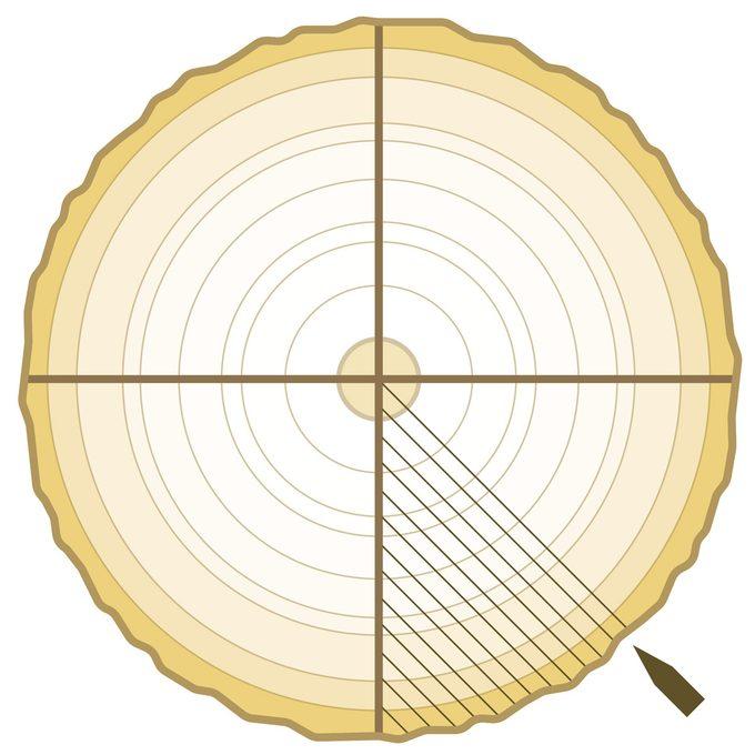 quarter sawing plywood veneer cut