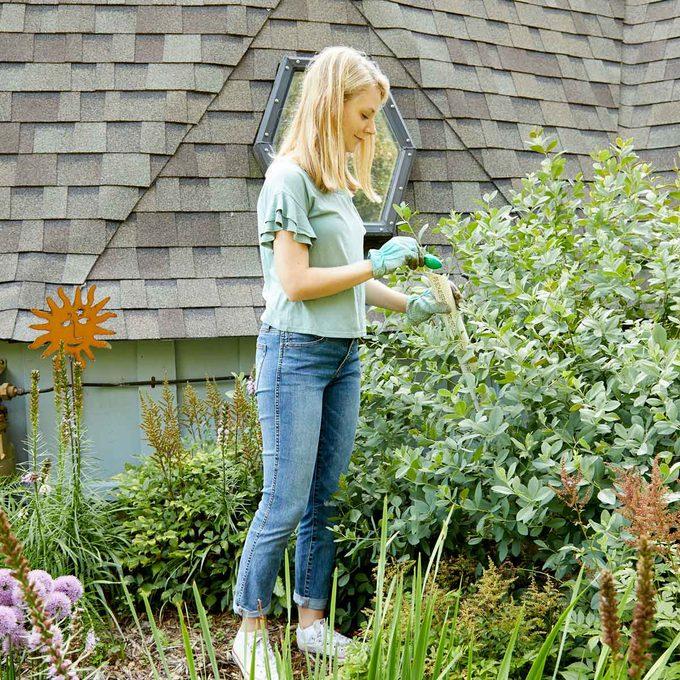 HH Handy Hint How to fertilize dense plants PVC