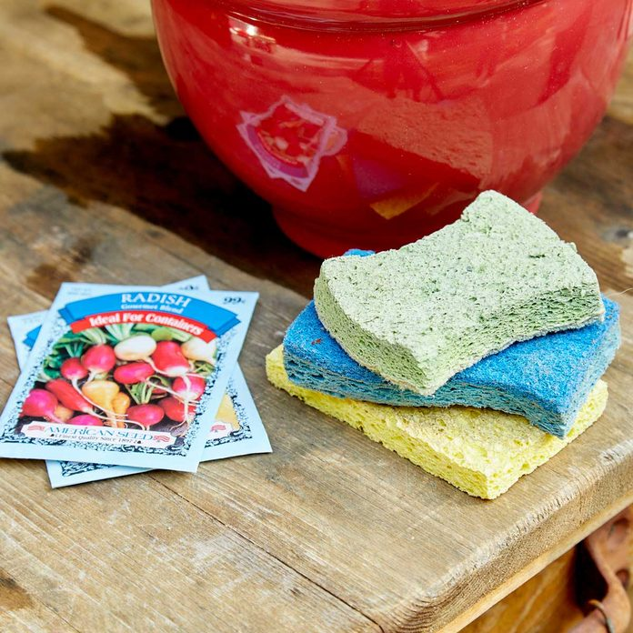 HH handy hint sponges plants stay hydrated