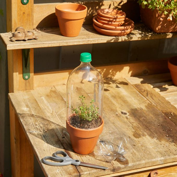 HH Handy Hint Micro Green house pop bottle