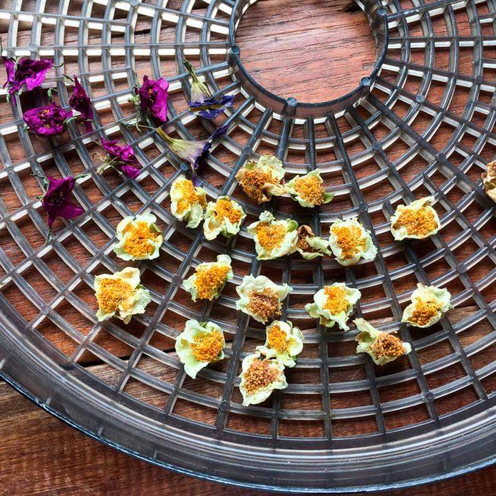 Flowers food dehydrator uses