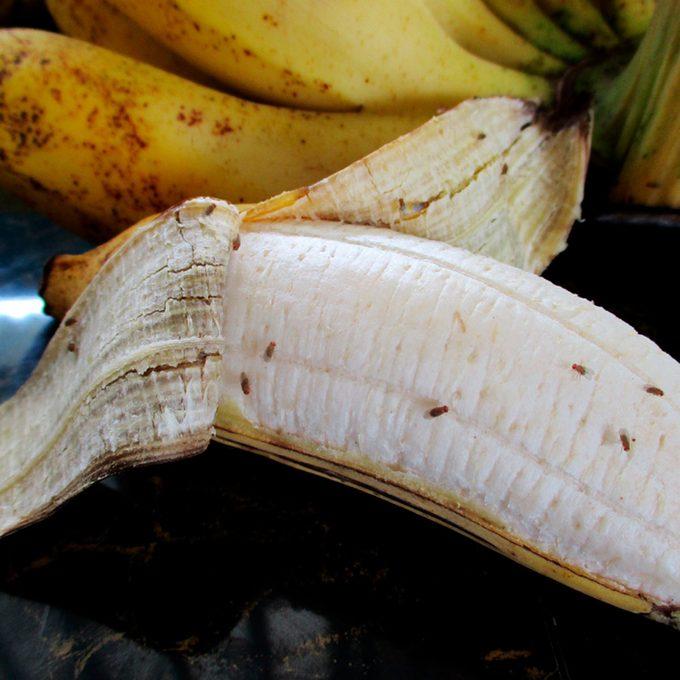 fruit flies on banana