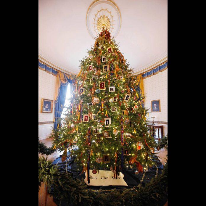 White House Christmas tree shine give share
