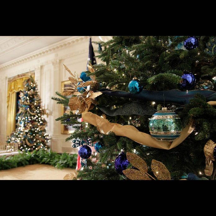 2010 White House Christmas decorations