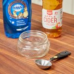The Best DIY Gnat Trap to Try