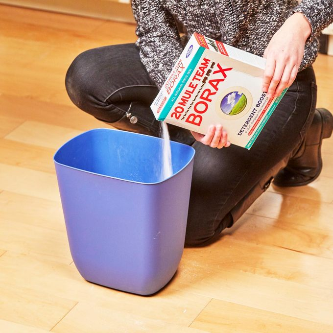 HH Handy hint garbage can deodorizer borax