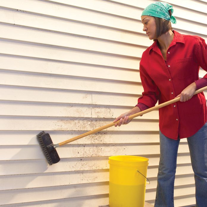 vinyl siding wash scrub