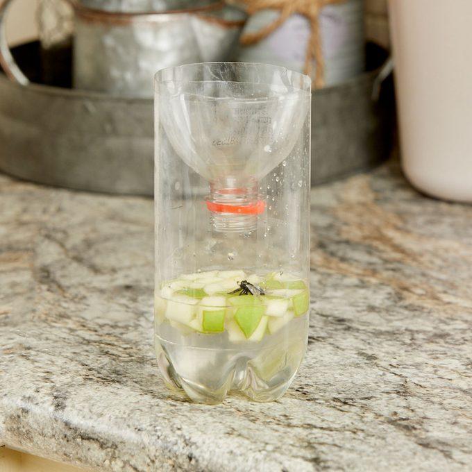 HH handy hint soda bottle fly trap apple chunks