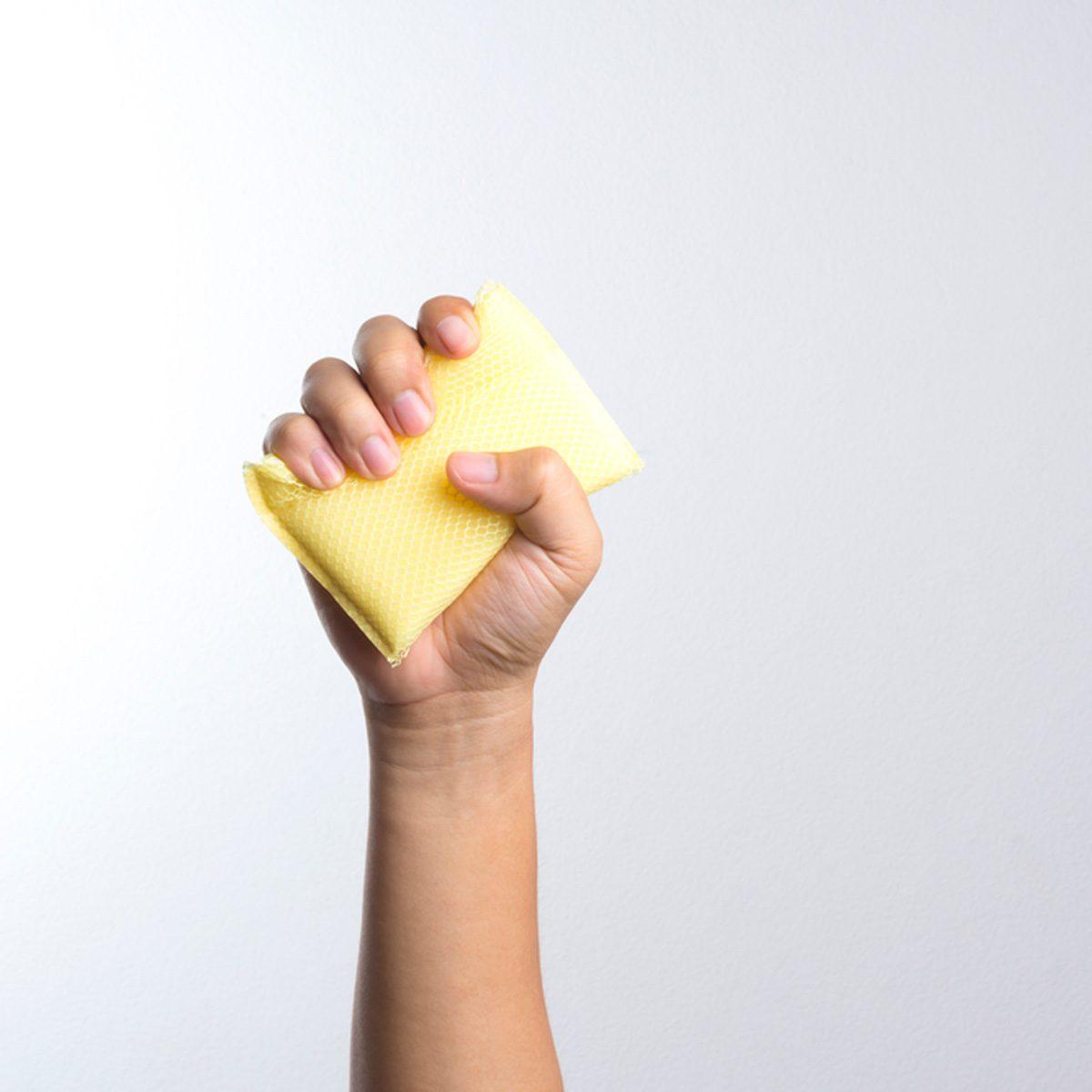 hand holding kitchen sponge