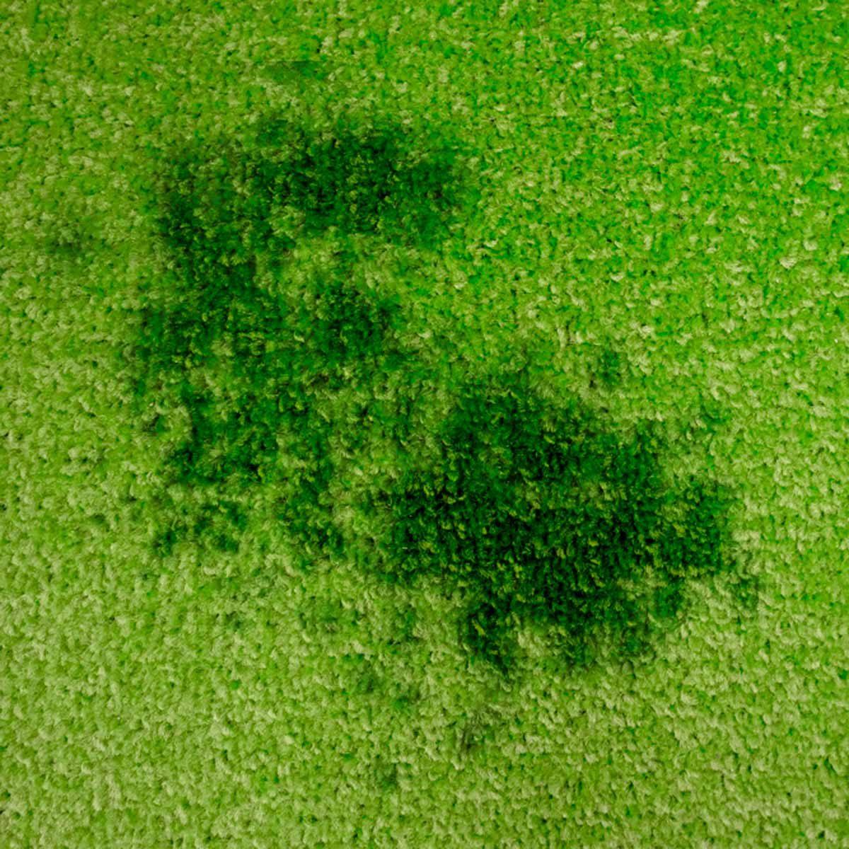 oil stain in carpet