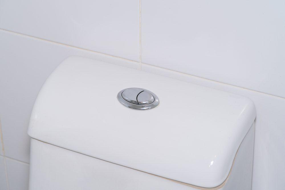 dual flush toilet button