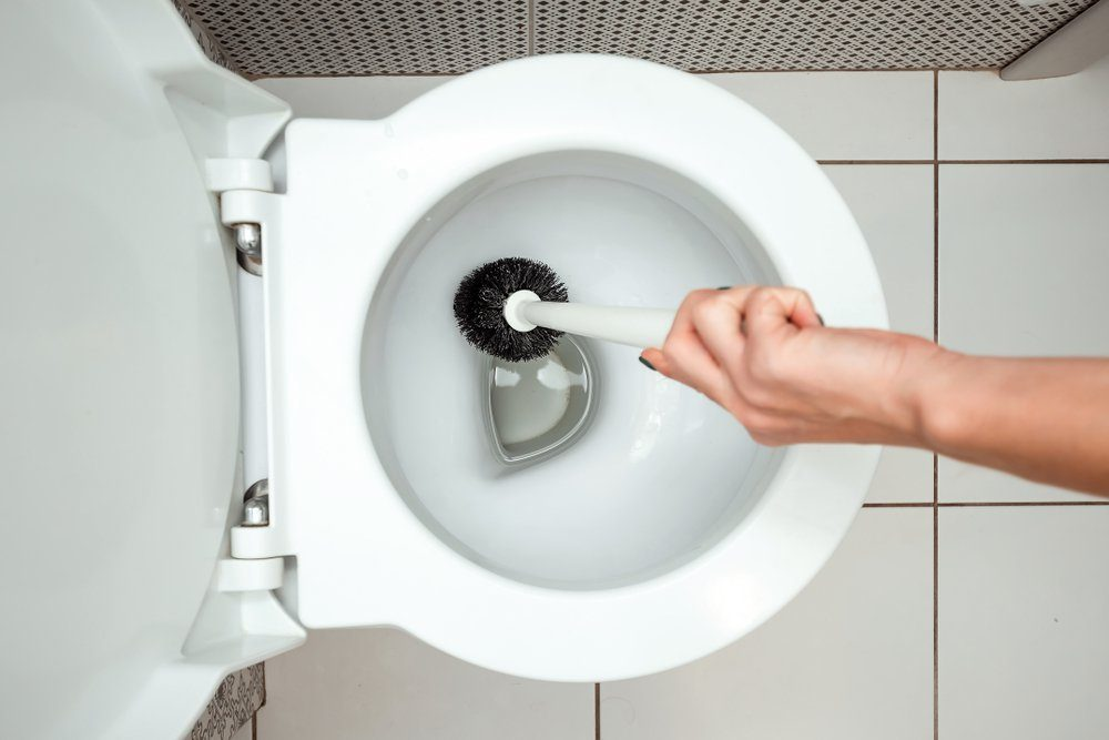 Close-up, Female hand washes a toilet brush. The concept of cleanliness in the house, hygiene, toilet, microbes.