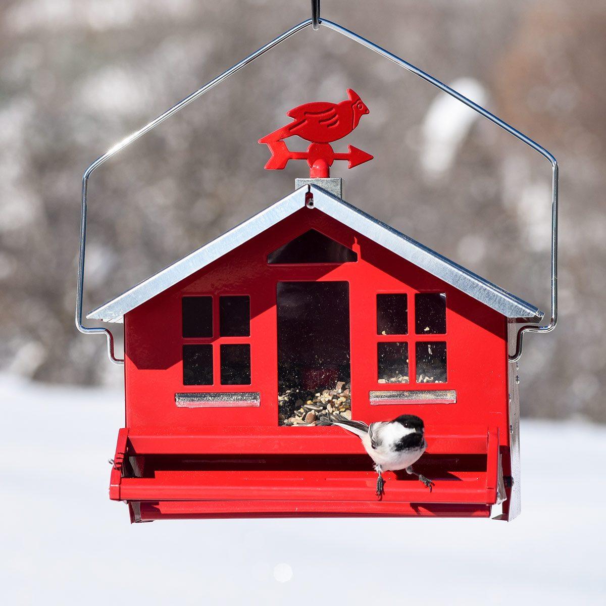 Bird-Feeder-Barn