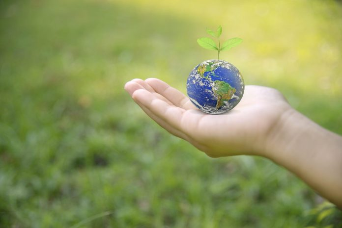 Hand Holding Earth On Green Grass For Earth Day