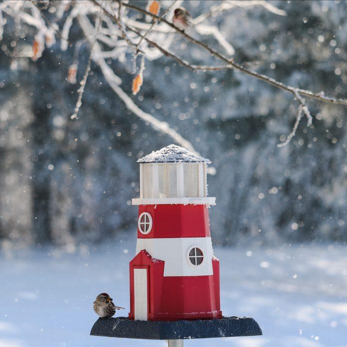 Lighthouse-Bird-Feeder