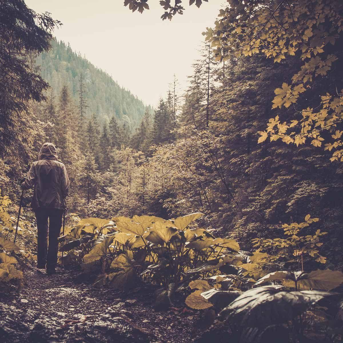 hiking gear you need