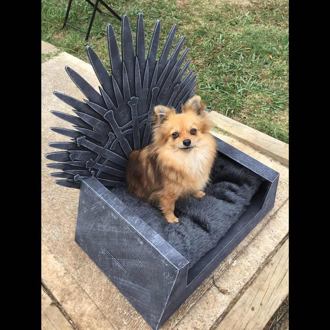 Pica-Fire-Throne-Bed