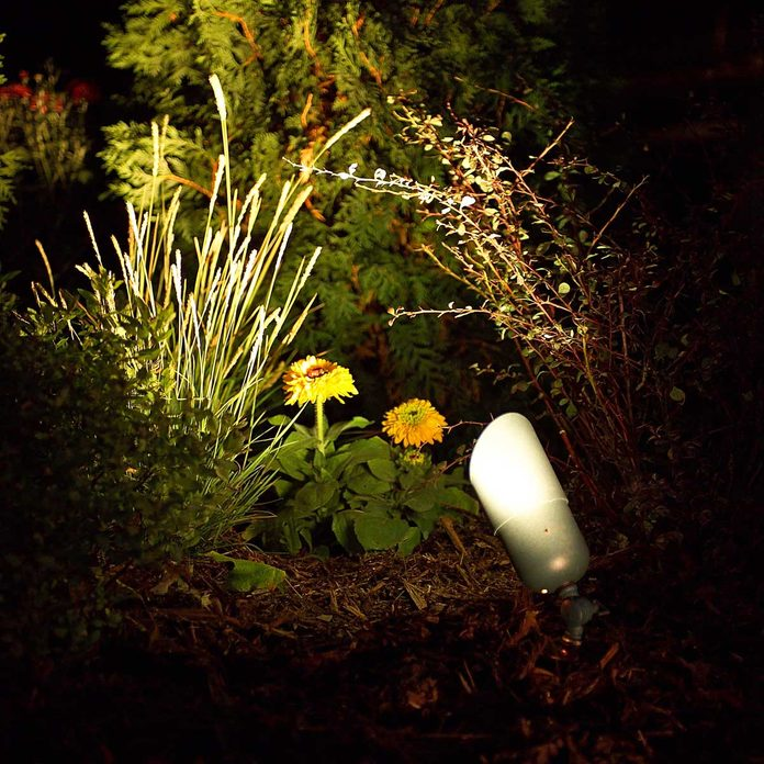 Outdoor-lighting-illuminates-landscaping