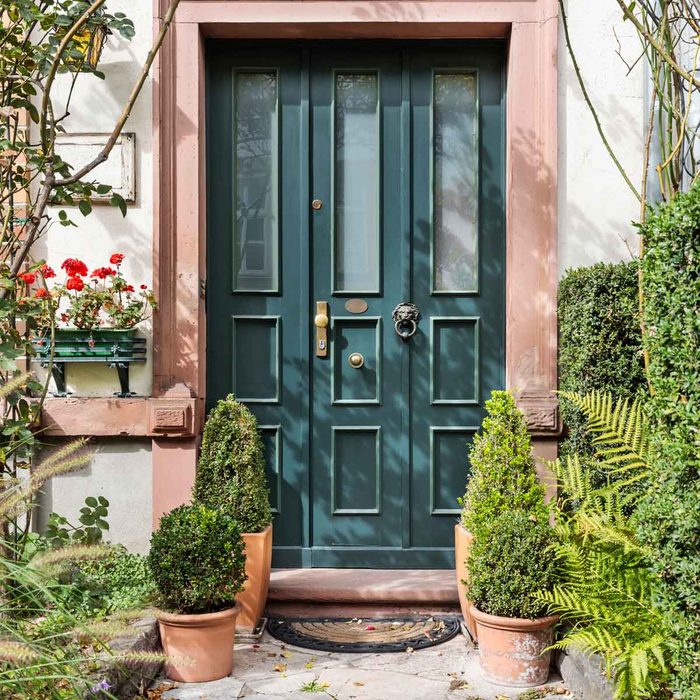 Front Door with Potted Plants