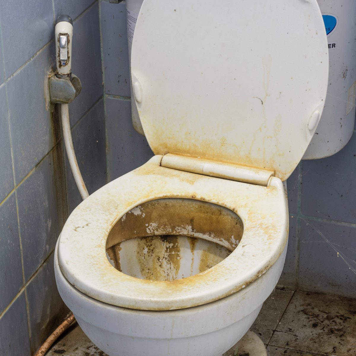 Dirty-Stained-Toilet