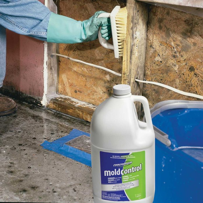 stuff we love concrobium mold control