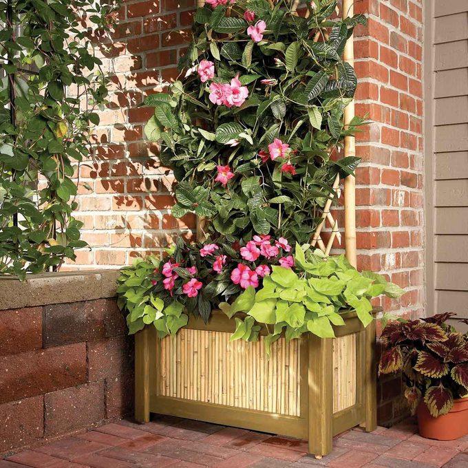 FH09APR_497_51_010 planter and trellis
