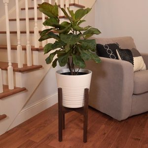 How to Build a Mid-Century Modern Plant Stand