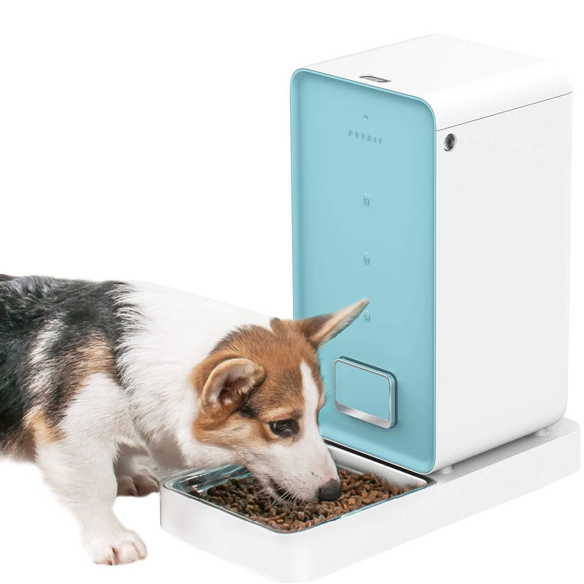 Smart feeder