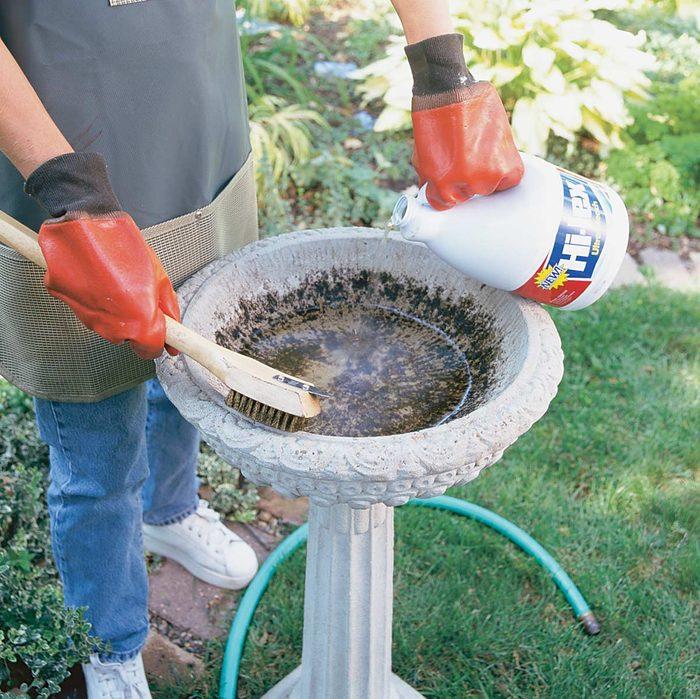 man wearing rubber gloves cleans a bird bath with bleach