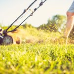 How to Keep Grass Green and Achieve a Healthy Lawn