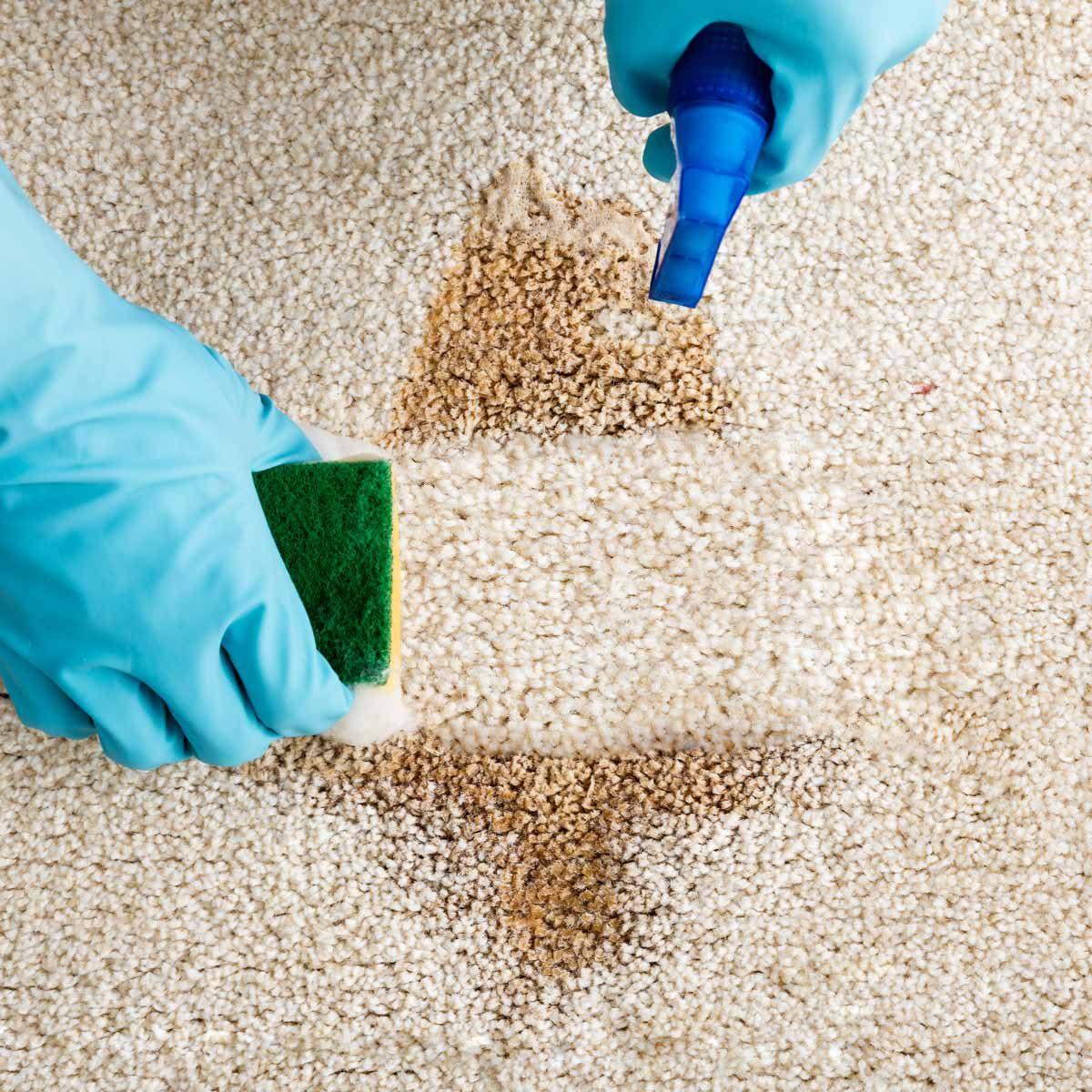 clean carpet stain