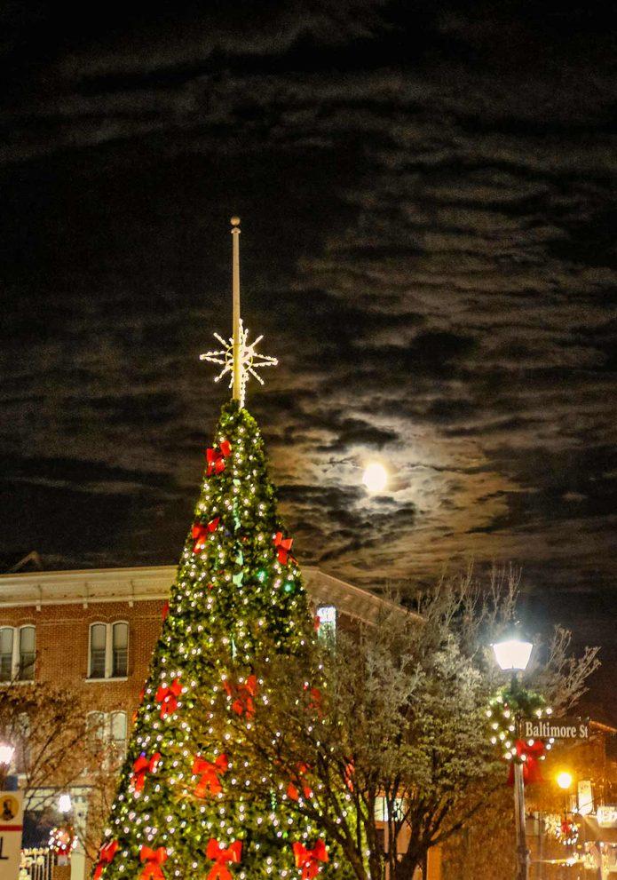 christmas tree lights night sky